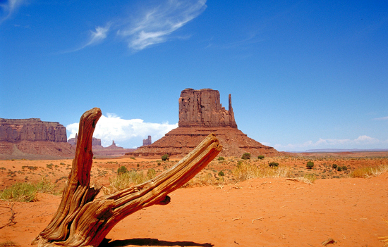 For those wanting to experience a slice of the desert, the Grand Canyon and Monument Valley are must-see sights.
